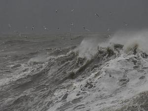 """Одесское """"цунами"""" могли вызвать смерч или судно"""