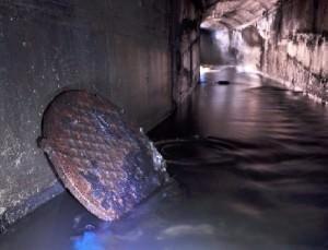 В «Царском селе» выявлены незаконные подключения к канализации