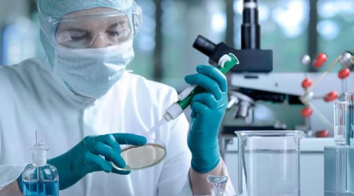 Доктор работает со стволовыми клетками.