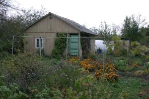 Осенние обязанности садовода