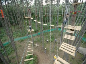 Веревочные парки на rope-parkcom