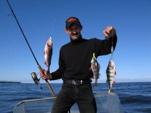 О рыбалке на рыбинском водохранилище на bitrdnet