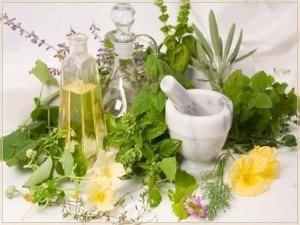 Все многообразие лечебных трав на fitomedicnet
