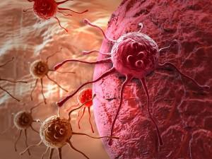 В Японии начал работу банк стволовых клеток
