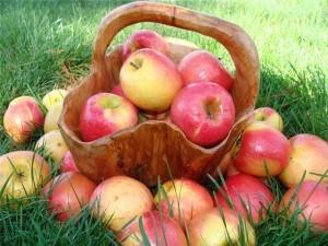 Британцы доказали пользу яблок