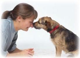 Собаки способны ''унюхать'' рак на ранних стадиях заболевания